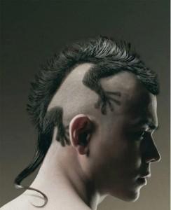 Lizard Mohawk Haircut